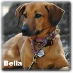 a_Bella