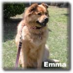 a_Emma