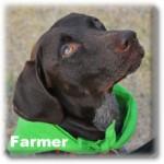 a_Farmer