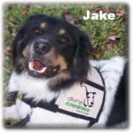 a_Jake