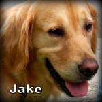 a_Jake1