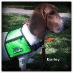 a_bailey1