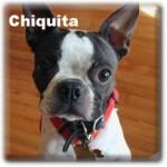 a_chiquita_20100912