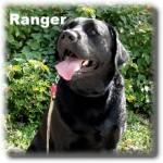 a_ranger