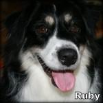 a_ruby_bn