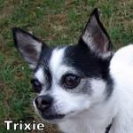 a_trixie